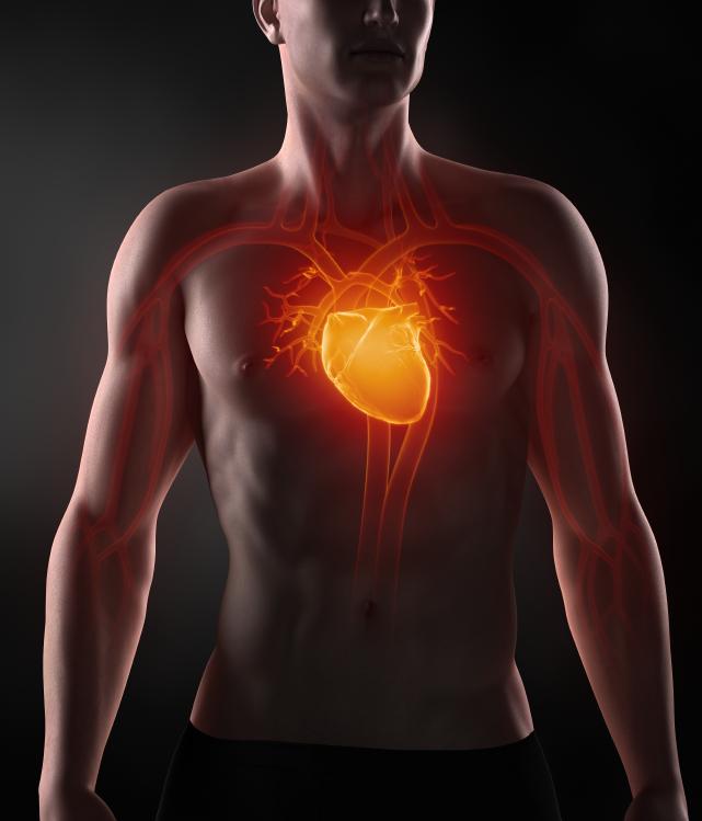 病気の予防とその食事~もっとよく知ろう心臓のこと~