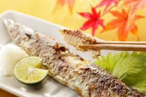 Grilled Pacific saury